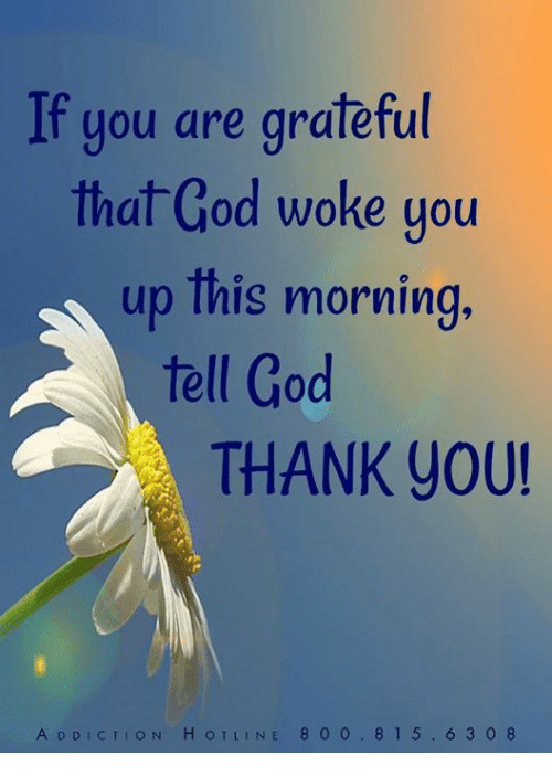 God, Memes, and Thank You: If you are grateful  that God woke you  up lhis morning  tell God  THANK You!  A DDICTION HOTLINE 8 0 0.815.6 3 0 8