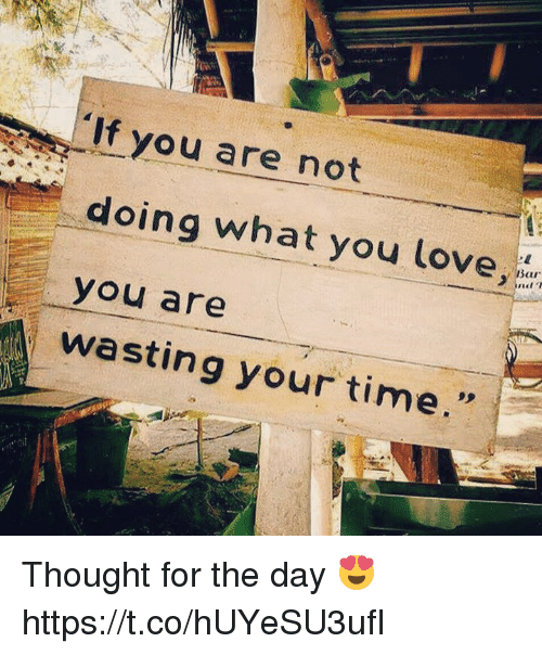 Love, Memes, and Time: If you are not  doing what you love  you are  wasting your time Thought for the day 😍 https://t.co/hUYeSU3ufI