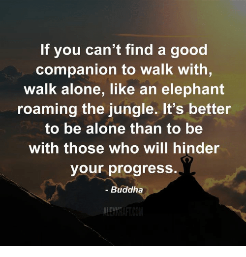 Being Alone, Memes, and Progressive: If you can't find a good  Companion to Walk with,  walk alone, like an elephant  roaming the jungle. It's better  to be alone than to be  with those who will hinder  your progress.  Buddha  ALEM RAFTCOM