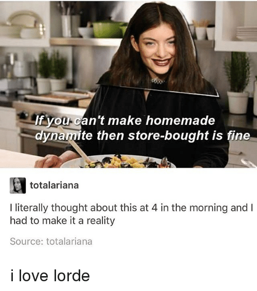 Lorde, Love, and Memes: If you-can't make homemade  dynamite then store-bought is fine  totalariana  I literally thought about this at 4 in the morning andI  had to make it a reality  Source: totalariana i love lorde