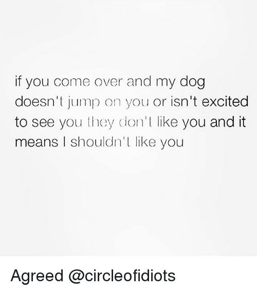 Come Over, Girl Memes, and Dog: if you come over and my dog  doesn't jump on you or isn't excited  to see you they don't like you and it  means I shouldn't like you Agreed @circleofidiots