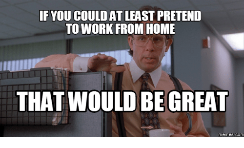 Work From Home Meme: IF YOU COULD ATLEAST PRETEND  TO WORK FROM HOME  THAT WOULD BE GREAT  memes. COM