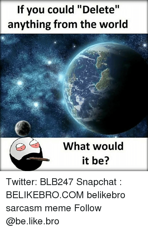 """Be Like, Meme, and Memes: If you could """"Delete""""  anything from the world  What would  it be? Twitter: BLB247 Snapchat : BELIKEBRO.COM belikebro sarcasm meme Follow @be.like.bro"""