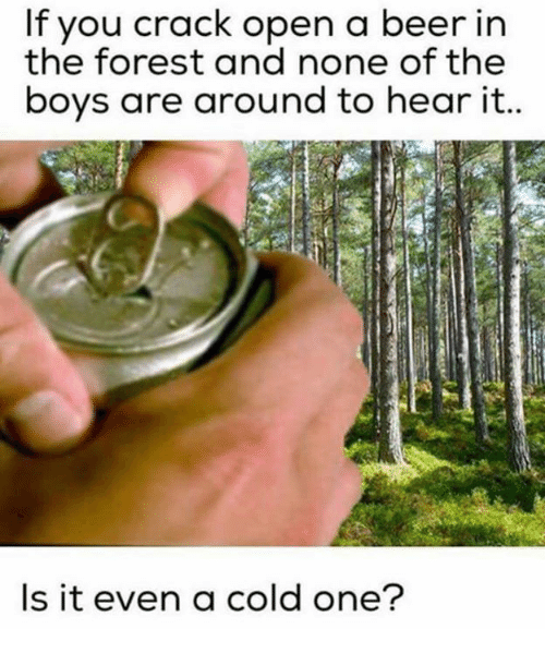 Beer, Memes, and Cold: If you crack open a beer in  the forest and none of the  boys are around to hear it  Is it even a cold one?