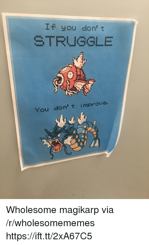 Magikarp, Struggle, and Wholesome: If you don' t  STRUGGLE  You don' t improve Wholesome magikarp via /r/wholesomememes https://ift.tt/2xA67C5