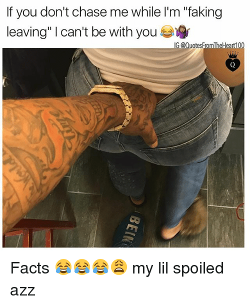 "Facts, Memes, and Chase: If you don't chase me while l'm ""faking  leaving"" 