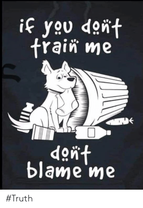 Blame Me: if you dont  frain me  dont  blame me #Truth