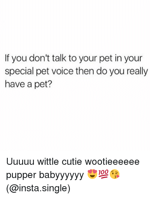 youre special: If you don't talk to your pet in your  special pet voice then do you really  have a pet? Uuuuu wittle cutie wootieeeeee pupper babyyyyyy 😍💯😘(@insta.single)