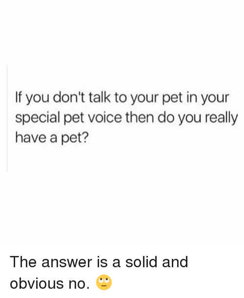 youre special: If you don't talk to your pet in your  special pet voice then do you really  have a pet? The answer is a solid and obvious no. 🙄