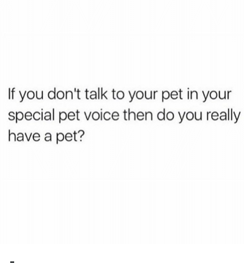 youre special: If you don't talk to your pet in your  special pet voice then do you really  have a pet? -