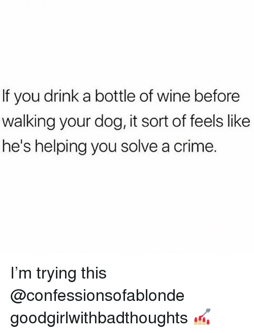 Crime, Memes, and Wine: If you drink a bottle of wine before  walking your dog, it sort of feels like  he's helping you solve a crime. I'm trying this @confessionsofablonde goodgirlwithbadthoughts 💅🏼
