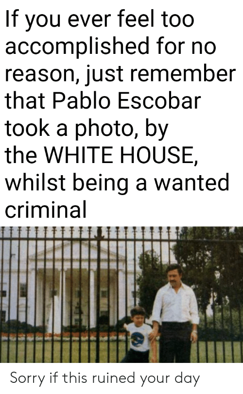 accomplished: If you ever feel too  accomplished for no  reason, just remember  that Pablo Escobar  took a photo, by  the WHITE HOUSE  whilst being a wanted  criminal Sorry if this ruined your day