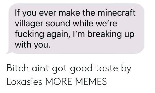 breaking up: If you ever make the minecraft  villager sound while we're  fucking again, I'm breaking up  with you. Bitch aint got good taste by Loxasies MORE MEMES