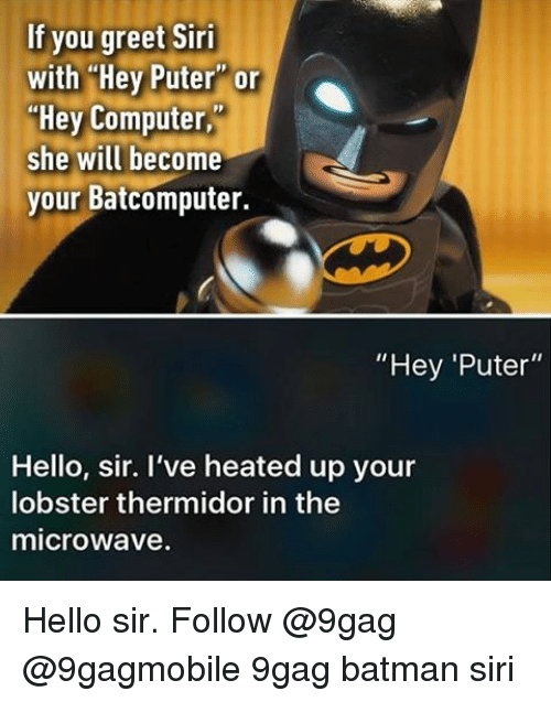 "9gag, Memes, and Siri: If you greet Siri  with Hey Puter or  ""Hey Computer,  she will become  your Batcomputer.  ""Hey ""Puter""  Hello, sir. I've heated up your  lobster thermidor in the  microwave. Hello sir. Follow @9gag @9gagmobile 9gag batman siri"