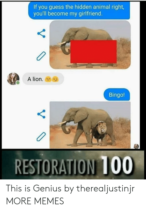 the hidden: If you guess the hidden animal right  you'll become my girlfriend.  A lion.  Bingo!  RESTORATION 100 This is Genius by therealjustinjr MORE MEMES