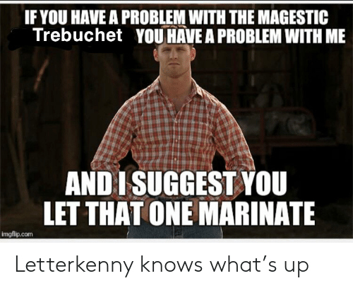 marinate: IF YOU HAVE A PROBLEM WITH THE MAGESTIC  Trebuchet YOU HAVE A PROBLEM WITH ME  AND ISUGGEST YOU  LET THAT ONE MARINATE  imgflip.com Letterkenny knows what's up