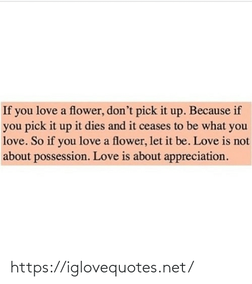 appreciation: If you love a flower, don't pick it up. Because if  you pick it up it dies and it ceases to be what you  love. So if you love a flower, let it be. Love is not  about possession. Love is about appreciation. https://iglovequotes.net/
