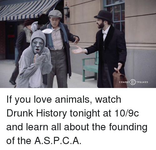 Animals, Dank, and Drunk: If you love animals, watch Drunk History tonight at 10/9c and learn all about the founding of the A.S.P.C.A.