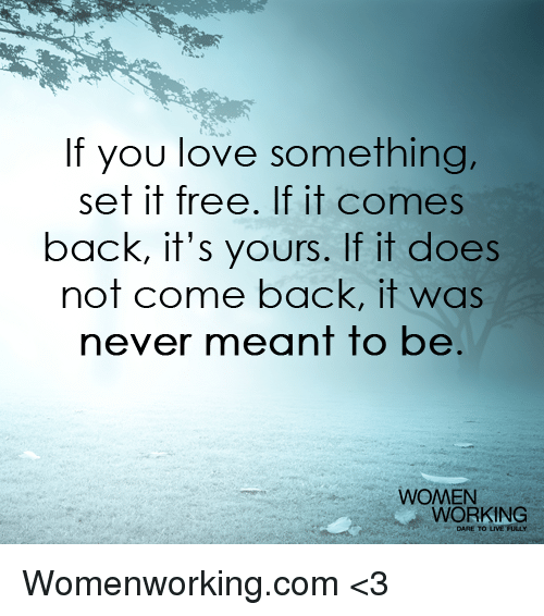 Funny Quotes If You Love Something Set It Free : If You Really Love Something Set It Free If It Comes Back It S