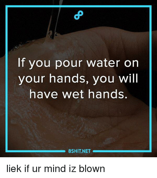 Memes, Water, and Mind: If you pour water on  your hands, you will  have wet hands  8SHIT NET liek if ur mind iz blown