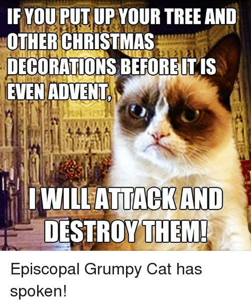 Tree, Trees, and Episcopal Church : IF YOU PUT UP YOUR TREE AND  OTHER CHRISTMAS  DECORATIONS BE FORE IT IS  EVEN ADVENT  I WILL ATTACK AND  DESTROY THEM! Episcopal Grumpy Cat has spoken!
