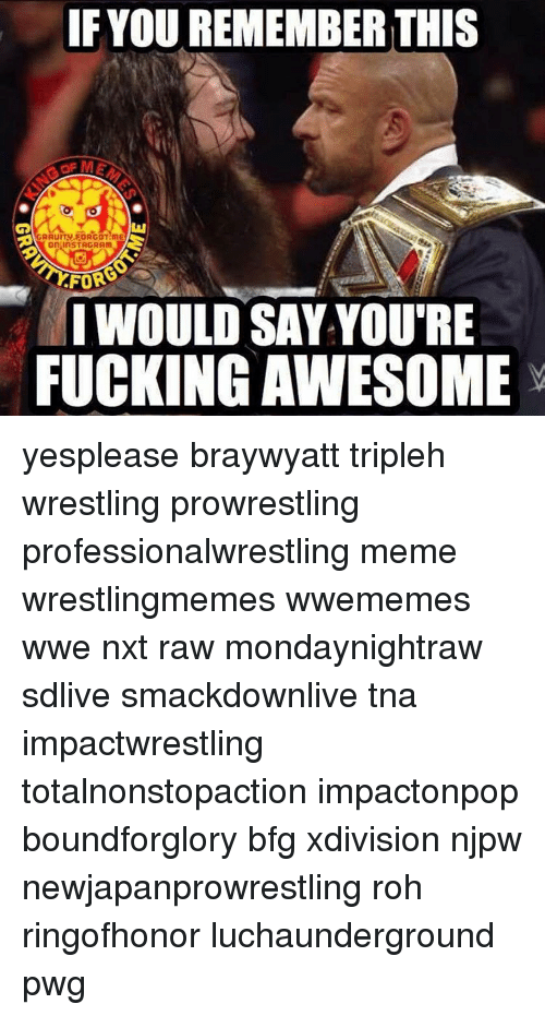 roh: IF YOU REMEMBER THIS  AGRAUITV FORGOT ME  on inSTAGRAm  FOR  IWOULD SAY YOU'RE  FUCKING AWESOME yesplease braywyatt tripleh wrestling prowrestling professionalwrestling meme wrestlingmemes wwememes wwe nxt raw mondaynightraw sdlive smackdownlive tna impactwrestling totalnonstopaction impactonpop boundforglory bfg xdivision njpw newjapanprowrestling roh ringofhonor luchaunderground pwg