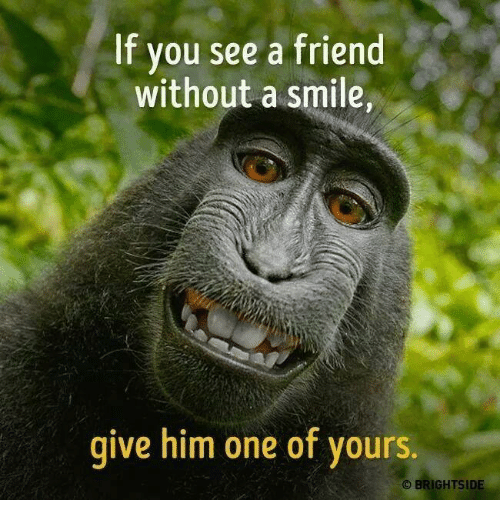 Memes, Smile, and 🤖: If you see a friend  without a smile,  give him one of yours.  O BRIGHTSIDE