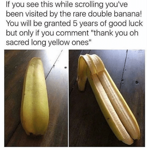 "Rareness: If you see this while scrolling you've  been visited by the rare double banana!  You will be granted 5 years of good luck  but only if you comment ""thank you oh  sacred long yellow ones"""