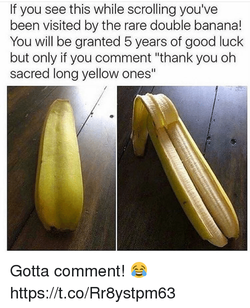 """Thank You, Banana, and Good: If you see this while scrolling you've  been visited by the rare double banana!  You will be granted 5 years of good luck  but only if you comment """"thank you oh  sacred long yellow ones"""" Gotta comment! 😂 https://t.co/Rr8ystpm63"""