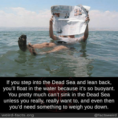 Memes, 🤖, and Step: If you step into the Dead Sea and lean back,  you'll float in the water because it's so buoyant.  You pretty much can't sink in the Dead Sea  unless you really, really want to, and even then  you'd need something to weigh you down.  weird-facts.org  @facts weird
