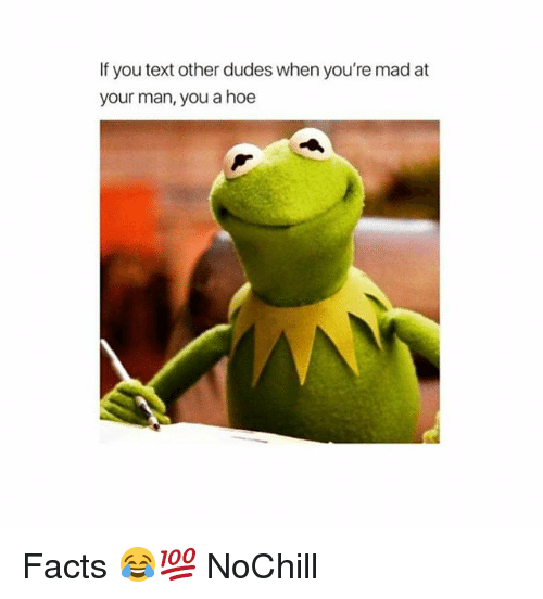 Facts, Funny, and Hoe: If you text other dudes when you're mad at  your man, you a hoe Facts 😂💯 NoChill
