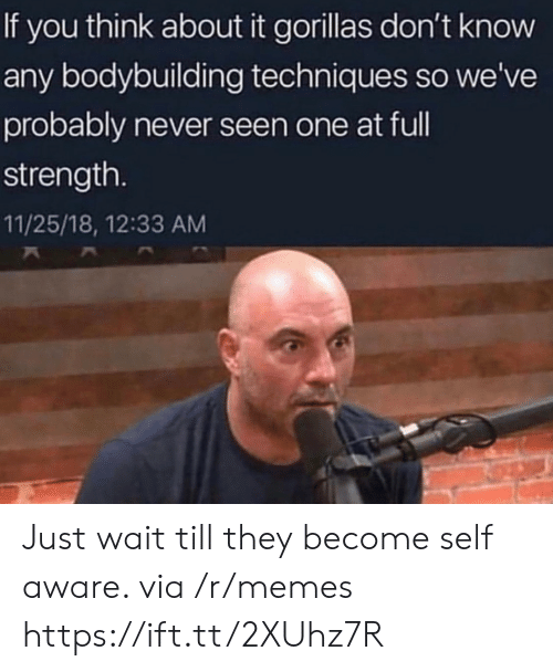 Bodybuilding: If you think about it gorillas don't know  any bodybuilding techniques so we've  probably never seen one at ful  strength.  11/25/18, 12:33 AM Just wait till they become self aware. via /r/memes https://ift.tt/2XUhz7R