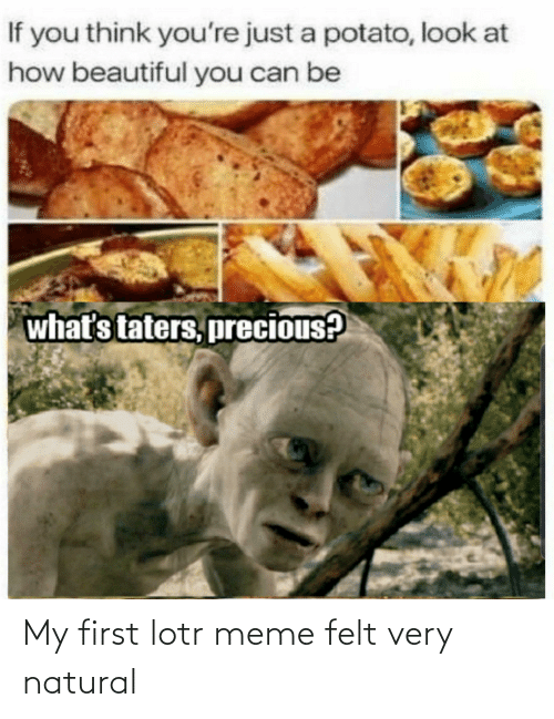 lotr meme: If you think you're just a potato, look at  how beautiful you can be  what's taters, precious? My first lotr meme felt very natural