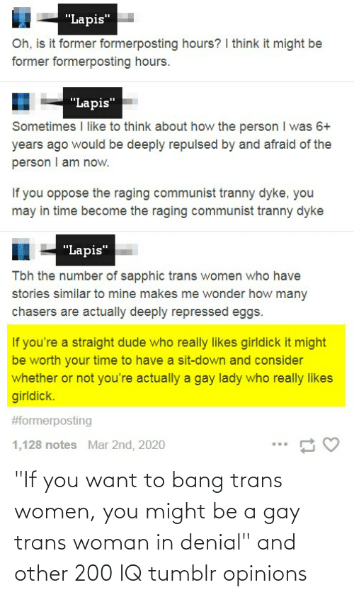 """bang: """"If you want to bang trans women, you might be a gay trans woman in denial"""" and other 200 IQ tumblr opinions"""