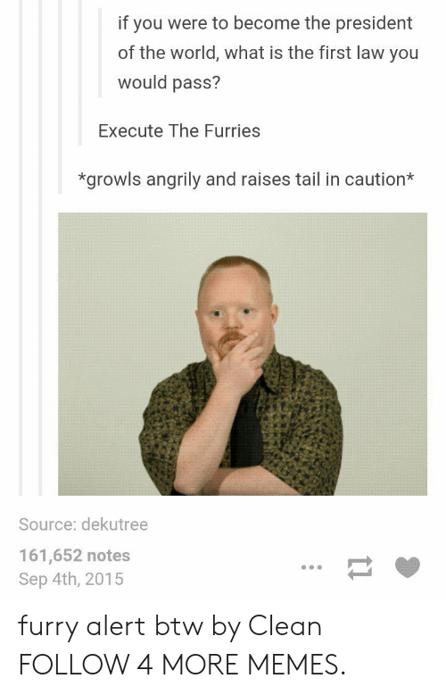 What Is The First: if you were to become the president  of the world, what is the first law you  would pass?  Execute The Furries  *growls angrily and raises tail in caution*  Source: dekutree  161,652 notes  Sep 4th, 2015  11 furry alert btw by CIean FOLLOW 4 MORE MEMES.