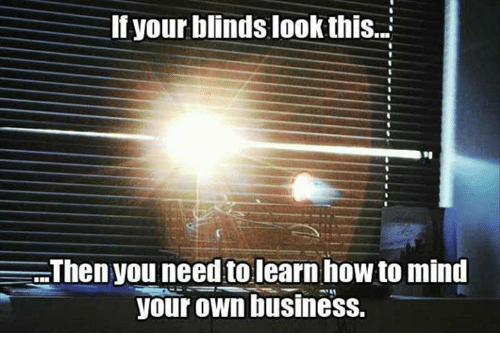 Dank, Business, and How To: If your blinds look this..S  Then you need to learn how to mind  your own business.