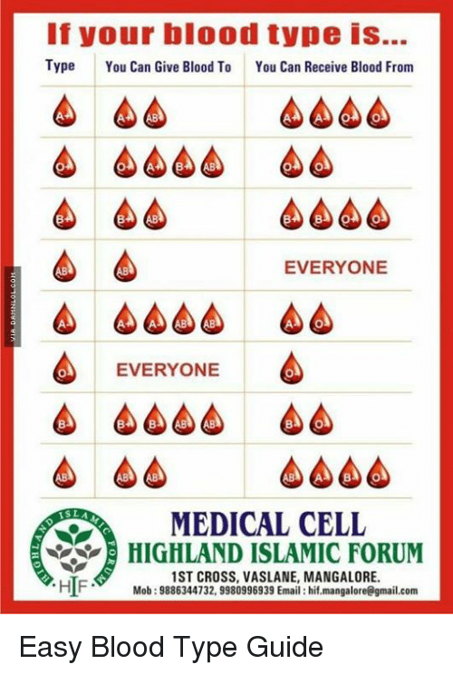 Bloods, Memes, and Cross: If your blood type is...  Type  You Can Give Blood To  You Can Receive Blood From  EVERYONE  EVERYONE  MEDICAL CELL  HIGHLAND ISLAMIC FORUM  1ST CROSS, VASLANE, MANGALORE.  HIF  Mob: 9886344732, 9980996939 Email: hif.mangalore@gmail.com Easy Blood Type Guide