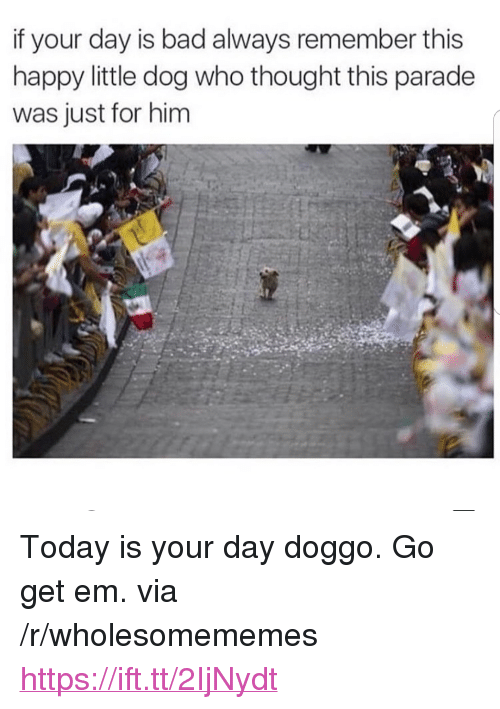 "Bad, Happy, and Today: if your day is bad always remember this  happy little dog who thought this parade  was just for him <p>Today is your day doggo. Go get em. via /r/wholesomememes <a href=""https://ift.tt/2IjNydt"">https://ift.tt/2IjNydt</a></p>"