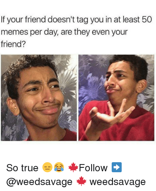 Memes, True, and 🤖: If your friend doesn't tag you in at least 50  memes per day, are they even your  friend? So true 😑😂 🍁Follow ➡ @weedsavage 🍁 weedsavage