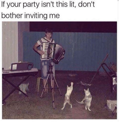 Bothere: If your party isn't this lit, don't  bother inviting me