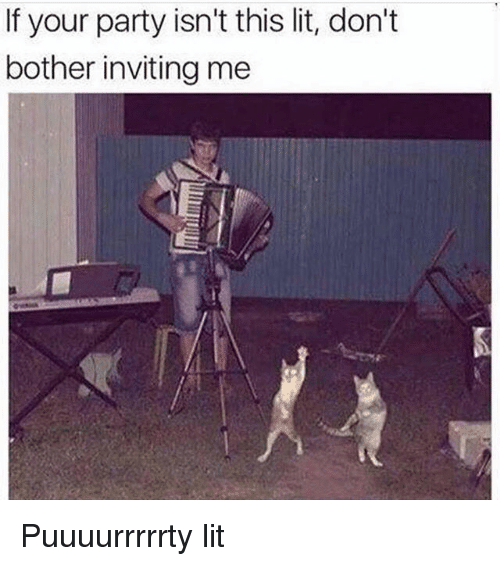 Bothere: If your party isn't this lit, don't  bother inviting me Puuuurrrrrty lit
