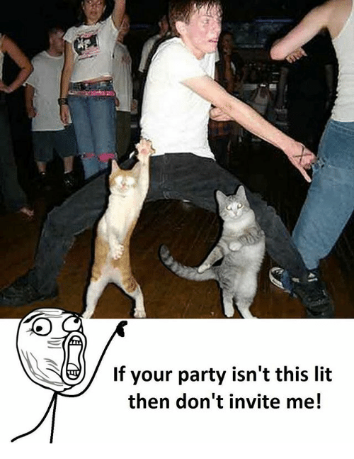 Lit, Memes, and Party: If your party isn't this lit  then don't invite me!