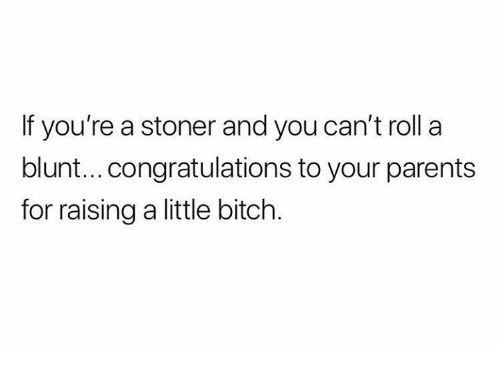 stoner: If you're a stoner and you can't roll a  blunt...congratulations to your parents  for raising a little bitch.