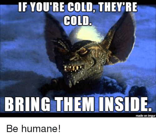 Imgur, Cold, and Advice Animals: IF YOU'RE COLD, THEY RE  COLD  BRING THEM INSIDE  made on imgur Be humane!