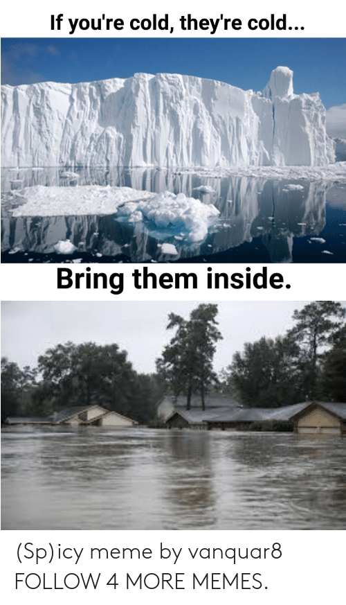If Youre Cold Theyre Cold: If you're cold, they're cold...  Bring them inside. (Sp)icy meme by vanquar8 FOLLOW 4 MORE MEMES.