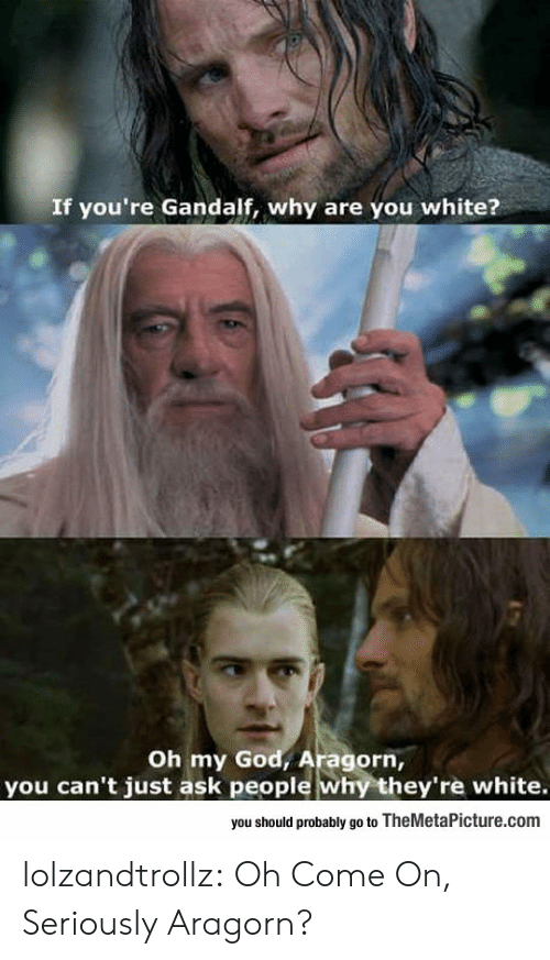 Gandalf: If you're Gandalf, why are you white?  Oh my God, Aragorn,  you can't just ask people why they're white.  you should probably go to TheMetaPicture.com lolzandtrollz:  Oh Come On, Seriously Aragorn?