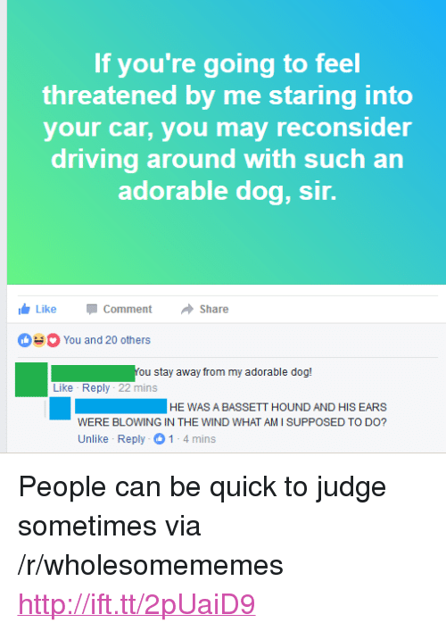 """what am i supposed to do: If you're going to feel  threatened by me staring into  your car, you may reconsider  driving around with such an  adorable dog, sir.  LikeCommentShare  You and 20 others  You stay away from my adorable dog!  Like Reply 22 mins  HEWAS A BASSETT HOUND AND HIS EARS  WERE BLOWING IN THE WIND WHAT AM I SUPPOSED TO DO?  Unlike Reply 1-4mins <p>People can be quick to judge sometimes via /r/wholesomememes <a href=""""http://ift.tt/2pUaiD9"""">http://ift.tt/2pUaiD9</a></p>"""