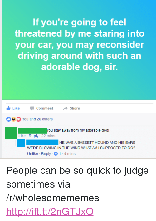 """what am i supposed to do: If you're going to feel  threatened by me staring into  your car, you may reconsider  driving around with such an  adorable dog, sir.  LikeCommentShare  You and 20 others  You stay away from my adorable dog!  Like Reply 22 mins  HEWAS A BASSETT HOUND AND HIS EARS  WERE BLOWING IN THE WIND WHAT AM I SUPPOSED TO DO?  Unlike Reply 1-4mins <p>People can be so quick to judge sometimes via /r/wholesomememes <a href=""""http://ift.tt/2nGTJxO"""">http://ift.tt/2nGTJxO</a></p>"""
