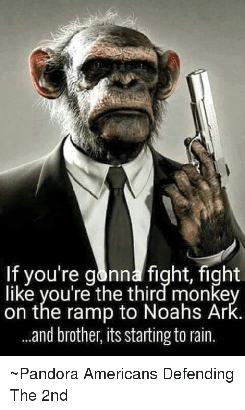Noah: If you're gonna fight, fight  like you're the third monke  on the ramp to Noahs Ar  and brother, its starting to rain. ~Pandora   Americans Defending The 2nd