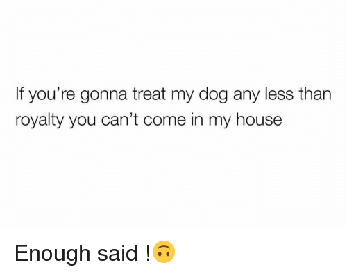 enough said: If you're gonna treat my dog any less than  royalty you can't come in my house Enough said !🙃